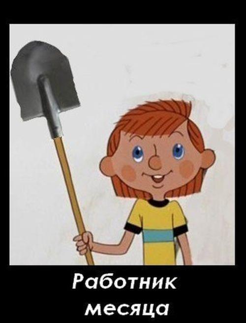 http://cn13.nevsedoma.com.ua/photo/207/1/podborlX.jpg